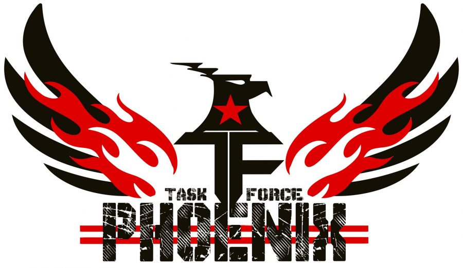 We All Start Somewhere : Task Force Phoenix